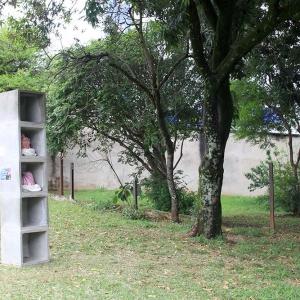 malatsion, colméias, 2016