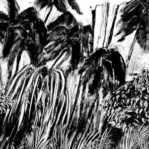 malatsion, Im Regenwald 03-0124, 2011