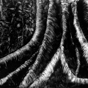 malatsion, Im Regenwald 07-3235, 2011