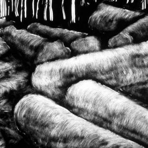 malatsion, Im Regenwald 16-3318, 2011