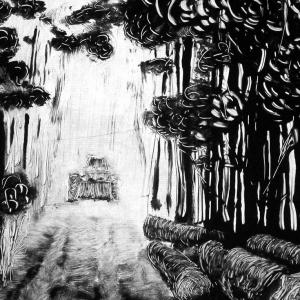 malatsion, Im Regenwald 31-3331, 2011