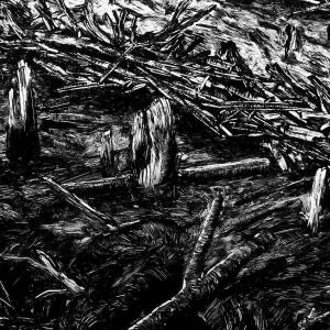 malatsion, Im Regenwald 52-0914, 2014